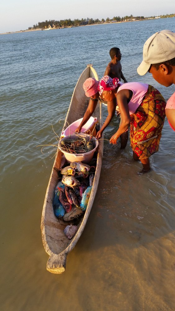 Loading up the day's catch to sell to the hotels/restaurants in Morondava
