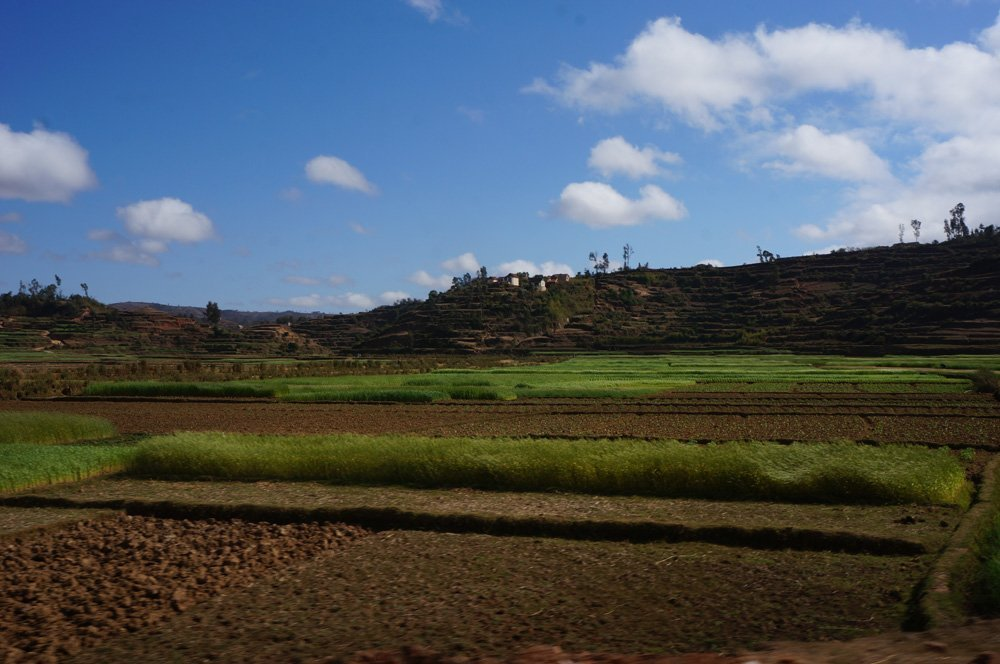As soon as you leave Tana,the scenery changes to this for a few hundred km. Never thought I'd be captivated by farmland.