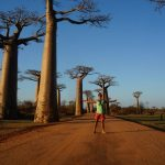 The Perfect Travel Itinerary For Madagascar