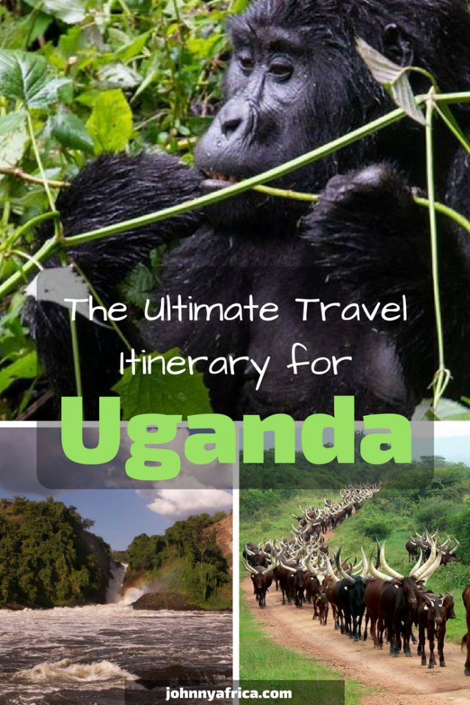 The Ultimate One Week and Two Week Travel Itinerary for Uganda