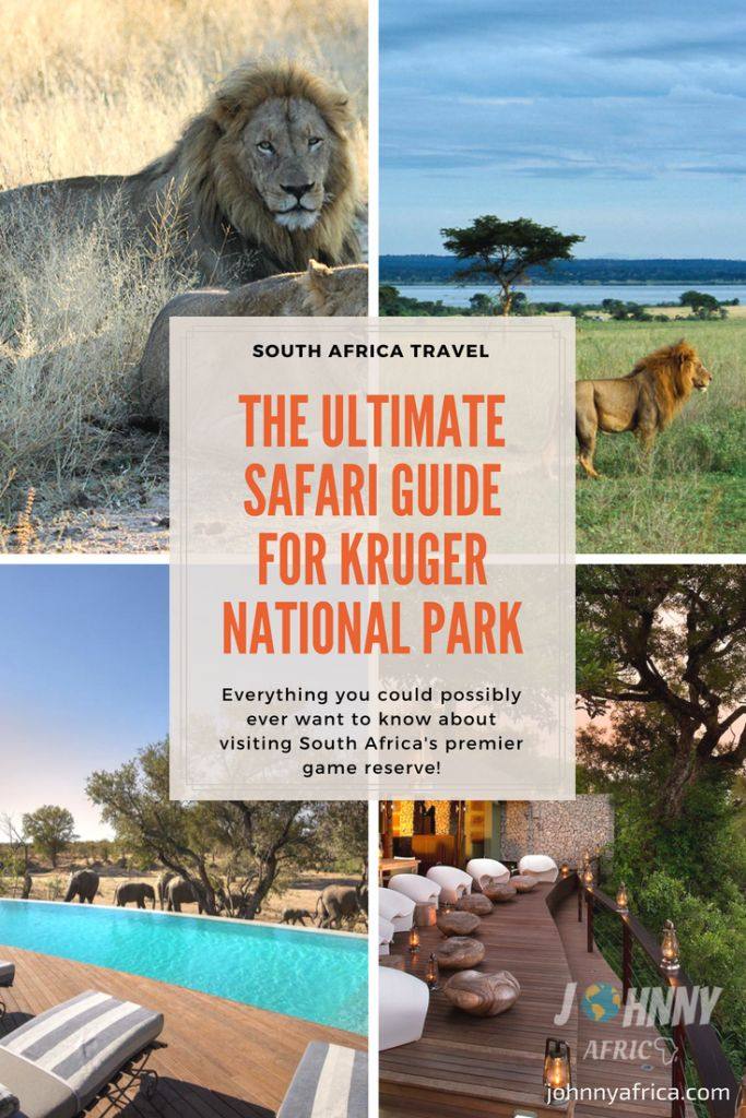 The Ultimate Safari Guide For Kruger National Park, South Africa