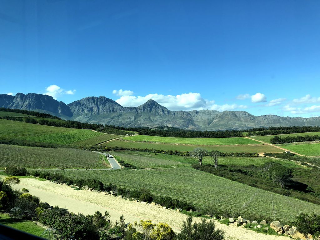 Waterkloof wine farm south africa