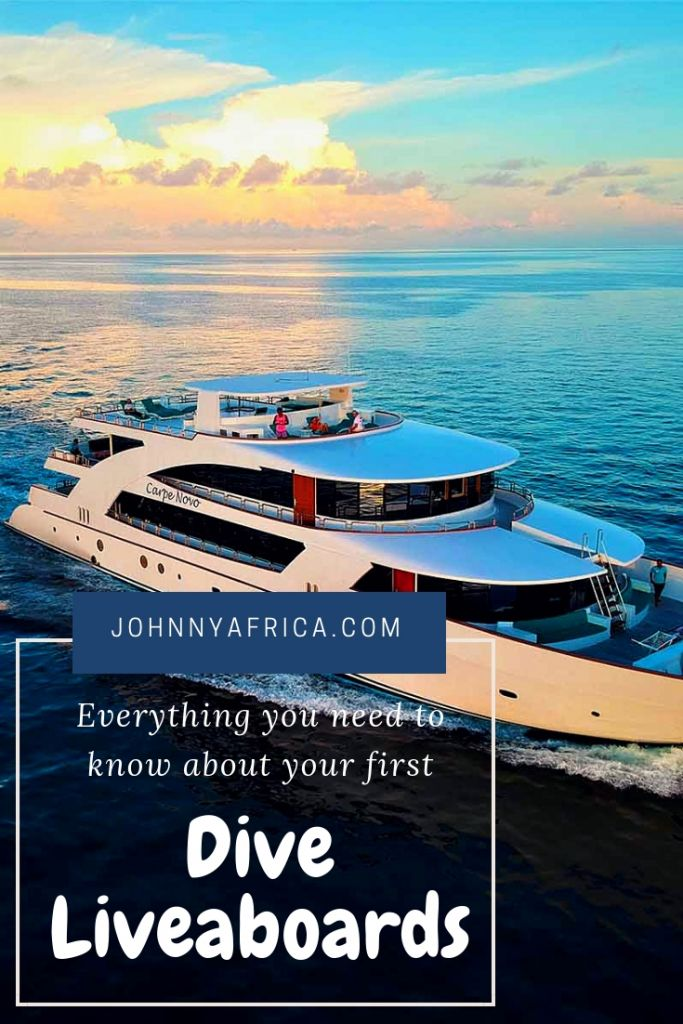 Everything You Need to Know For Your First Dive Liveaboard